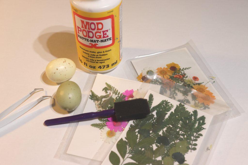 Supplies for applique dried floral eggs