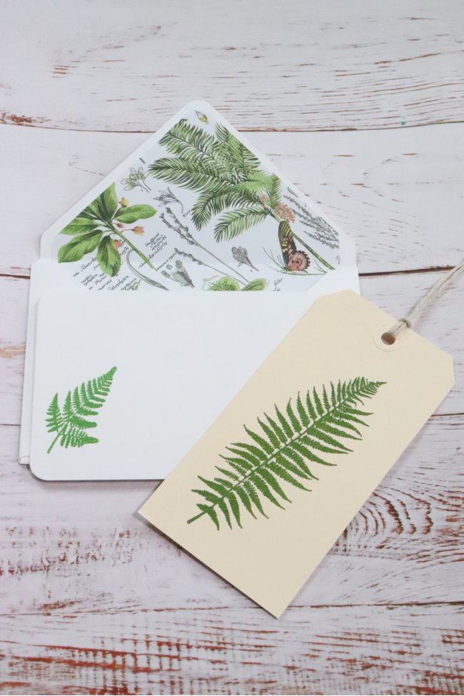 The DIY decorative notecard is white with a botanical envelope insert with greens and browns. The card is white with an embossed green fern
